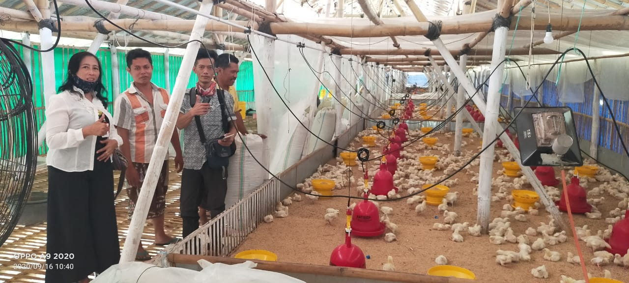 MONITORING JARING PEMUDA PRODUKTIF LEWAT KECAMATAN